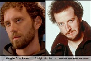 Hodgins from Bones Totally Looks Like Marv from Home Alone
