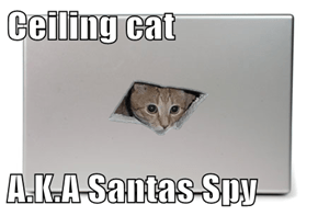 Ceiling cat  A.K.A Santas Spy