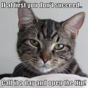 If at first you don't succeed..  Call it a day and open the Nip!