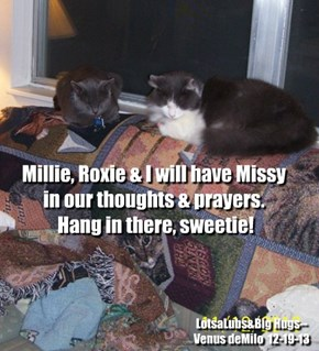 FOR MILLIE & MISSY