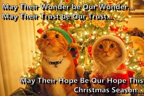 May Their Wonder be Our Wonder... May Their Trust be Our Trust...   May Their Hope Be Our Hope This Christmas Season...