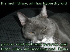 It's meh Missy, aih has hyperthyroid  pweeze send meh sum pwayers, gud thots, vibes, aih needs em awl. Fanks
