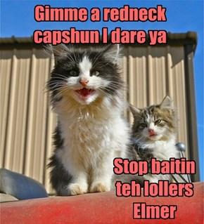 Gimme a redneck capshun I dare ya
