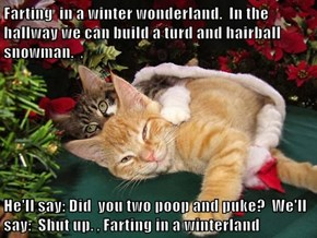 Farting  in a winter wonderland.  In the hallway we can build a turd and hairball snowman.  ,  He'll say: Did  you two poop and puke?  We'll say:  Shut up. , Farting in a winterland