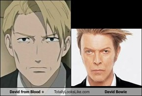 David from Blood + Totally Looks Like David Bowie