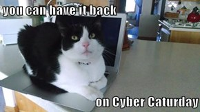 you can have it back  on Cyber Caturday