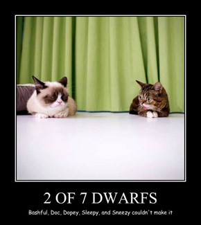 2 OF 7 DWARFS