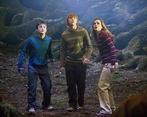 The Genetics Behind Harry Potter