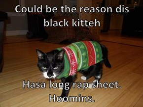 Could be the reason dis black kitteh  Hasa long rap sheet. Hoomins.