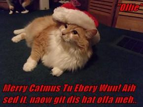 """Ollie""  Merry Catmus Tu Ebery Wun! Aih sed it, naow git dis hat offa meh.."