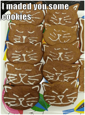I maded you some cookies