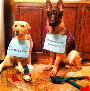 Partners in Christmas Crime