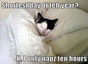 Shortest day of teh year?  K, I only napz ten hours