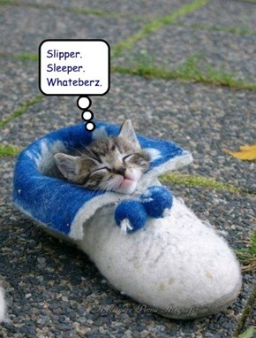 Slipper. Sleeper. Whateberz.