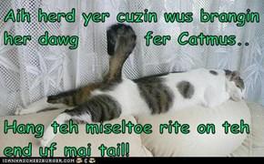Aih herd yer cuzin wus brangin her dawg         fer Catmus..  Hang teh miseltoe rite on teh end uf mai tail!