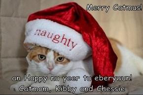 Merry Catmus!   an Happy nu yeer tu eberywun! Catmom, Kibby and Chessie
