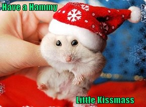Have a Hammy                                            Little Kissmass