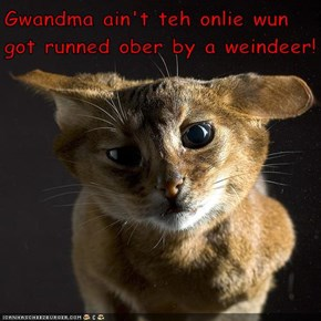 Gwandma ain't teh onlie wun got runned ober by a weindeer!