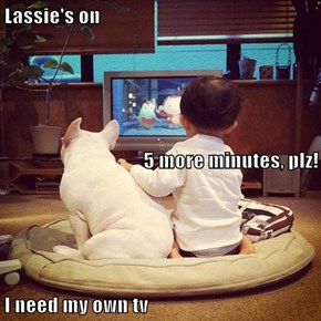 Lassie's on 5 more minutes, plz! I need my own tv
