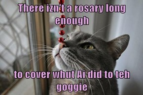 There izn't a rosary long enough  to cover whut Ai did to teh goggie