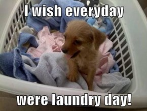 I wish everyday  were laundry day!