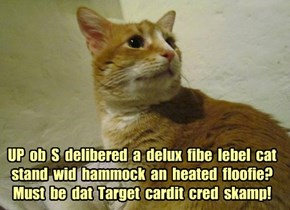 UP  ob  S  delibered  a  delux  fibe  lebel  cat stand  wid  hammock  an  heated  floofie?  Must  be  dat  Target  cardit  cred  skamp!