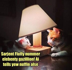 Sarjent Fluffy nummer elebenty gazillion! Ai tells yew nuffin alse