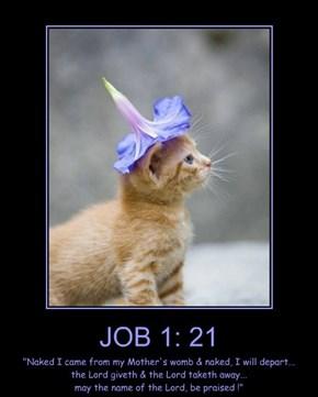JOB 1: 21