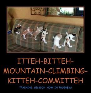 ITTEH-BITTEH-MOUNTAIN-CLIMBING-KITTEH-COMMITTEH