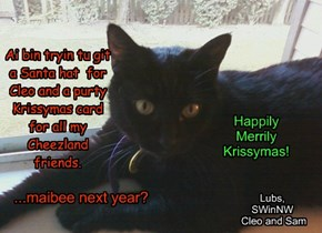 Merrily Krissymas Cheezfriends!