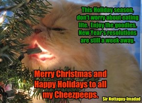 Merry Christmas and Happy Holidays to all my Cheezpeeps