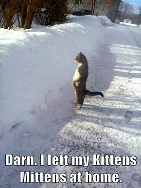 Darn. I left my Kittens Mittens at home.