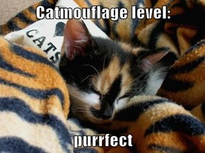 Catmouflage level:  purrfect