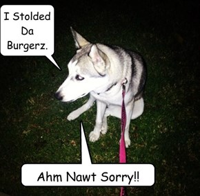 I Stolded Da Burgerz.