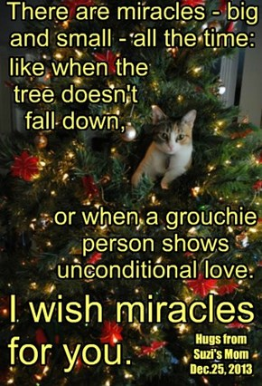 I wish miracles for you.