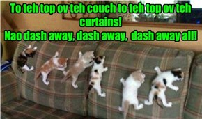 To teh top ov teh couch to teh top ov teh curtains!  Nao dash away, dash away,  dash away all!