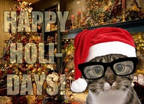Happy Holidays from JeffCat