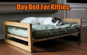 Day Bed For Kitties.