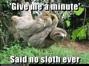 'Give me a minute'  Said no sloth ever