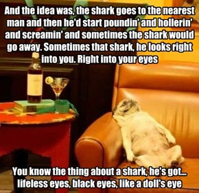 And the idea was, the shark goes to the nearest man and then he'd start poundin' and hollerin' and screamin' and sometimes the shark would go away. Sometimes that shark, he looks right into you. Right into your eyes