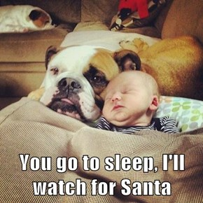 You go to sleep, I'll watch for Santa