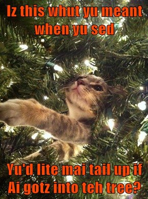 Iz this whut yu meant when yu sed  Yu'd lite mai tail up if Ai gotz into teh tree?