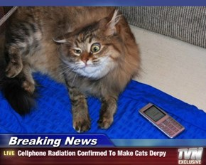 Breaking News - Cellphone Radiation Confirmed To Make Cats Derpy