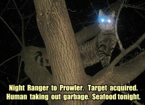 Night  Ranger  to  Prowler.   Target  acquired.   Human  taking  out  garbage.  Seafood tonight.
