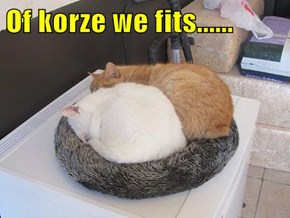 Of korze we fits......