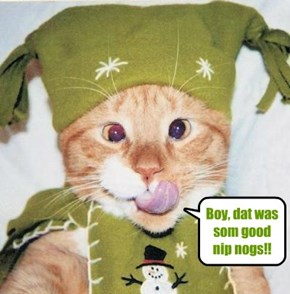 "Snookers wor a wunnerful costume for teh Catmus Party after ""A Christmas Carol"".."