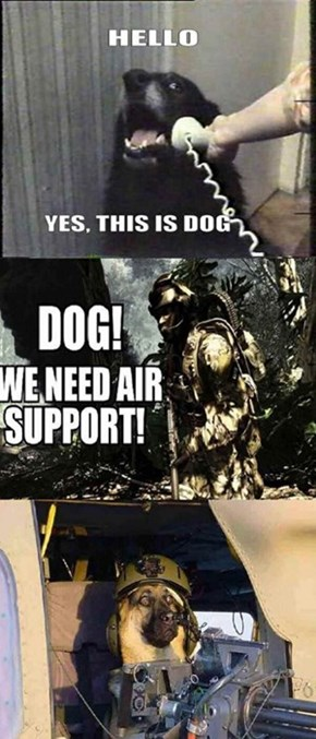 Fido, Go Fetch the Black Hawk!