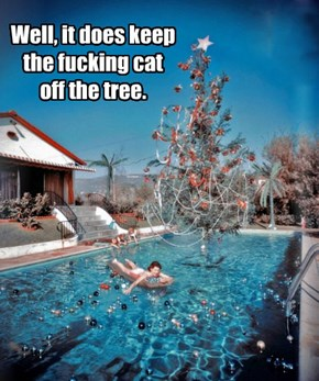 Well, it does keep the fucking cat off the tree.