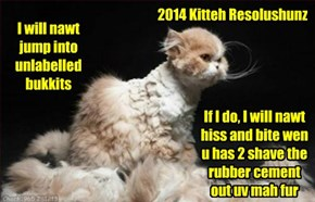 2014 Kitteh Resolushunz