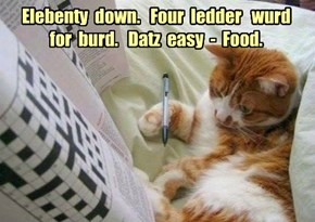 Elebenty  down.   Four  ledder   wurd  for  burd.   Datz  easy  -  Food.